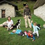 Cani per caso: scuola per cani, piscina, ludoteca a Venezia, Mestre