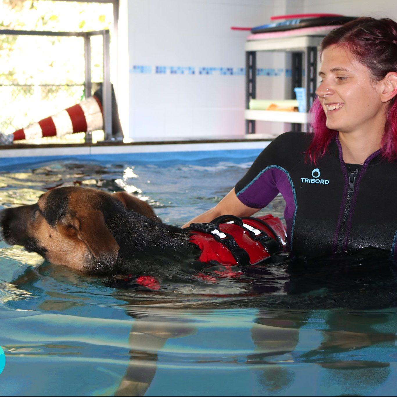 Eliana, piscina e acquaticità per cani
