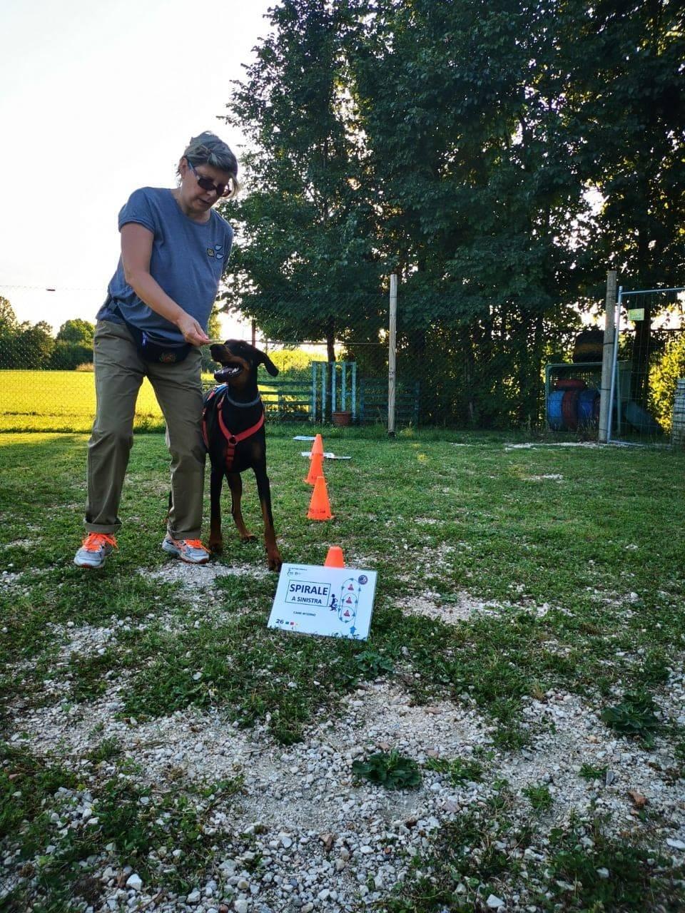 Adottare un cane, consigli utili
