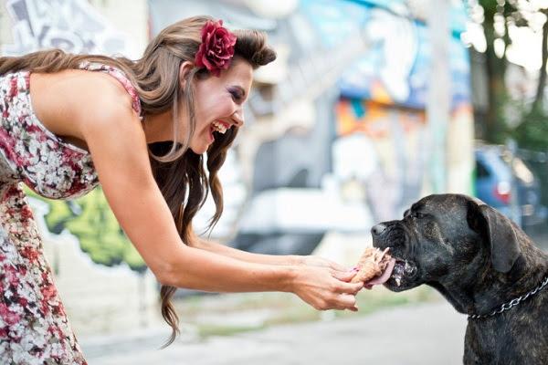 Ghiaccioli per cani: ricetta